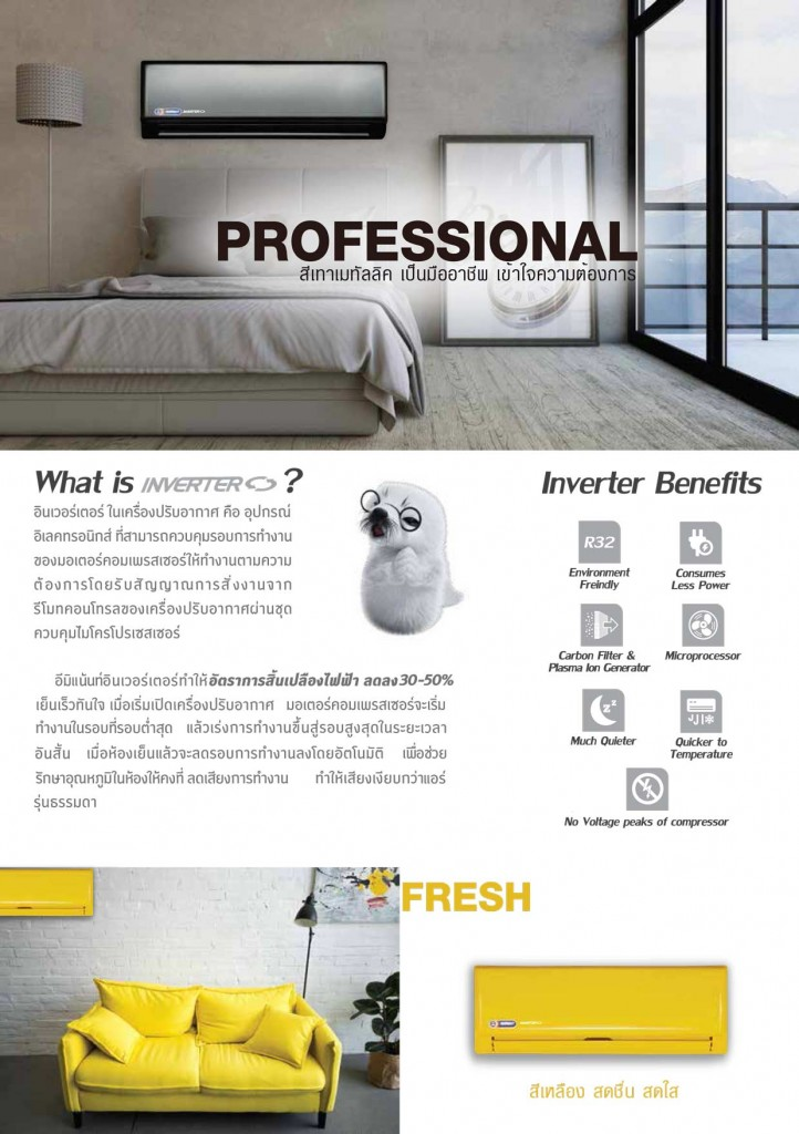 Brochure-Air-Color_Final-2